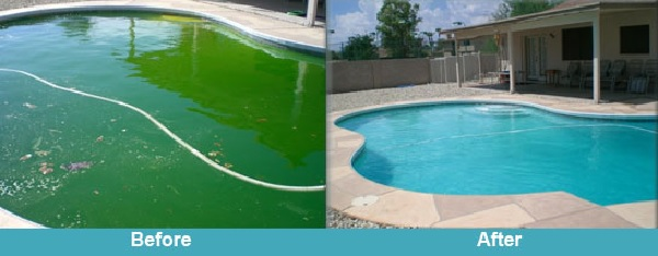 Green pool recovery
